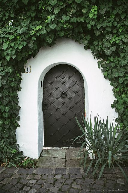 Door in Szentendre, Hungary by Dmitri Korobtsov - beautiful....I imagine it is nice and cozy inside...