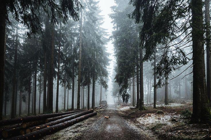 Gassistrecke auf dem kleinen Feldberg im Taunus bei Schnee