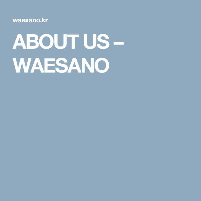 ABOUT US – WAESANO