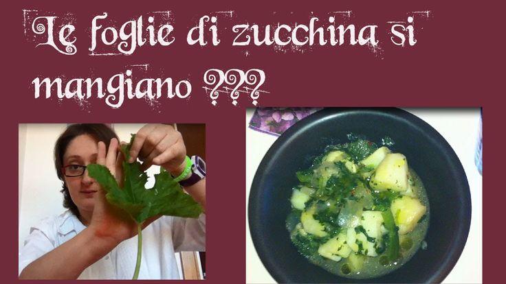 LIMITIAMOiDANNI_13. Le foglie di zucchina si mangiano?