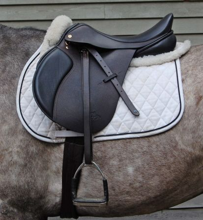 Black saddle, grey horse, my 2 favorite things.