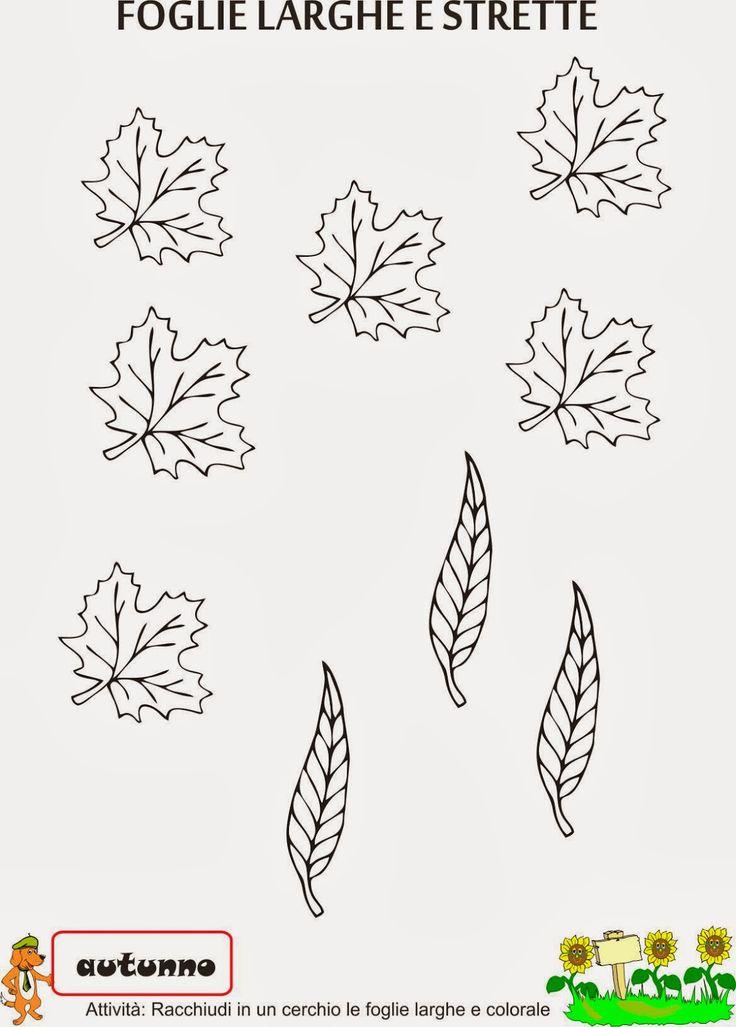 foglie - Cerca con Google