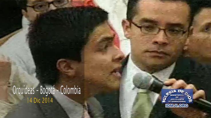Testimonio Orquídeas – Bogotá – Colombia