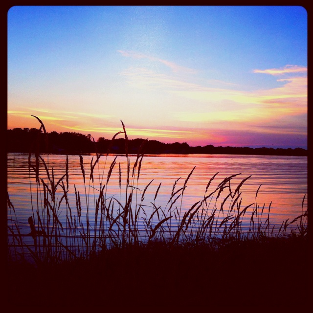 Three Rivers Michigan: 21 Best River Country's Scidmore Park In Three Rivers MI
