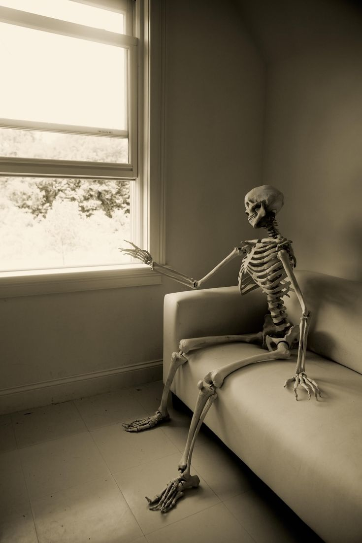 Image result for skeleton waiting to leave