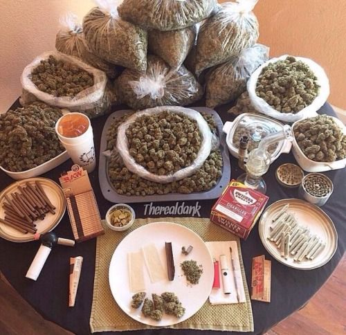Do yourself a favor and like Fitness Motivation. All the cool stoners are doing it. http://www.pinterest.com/getfitasafiddle/