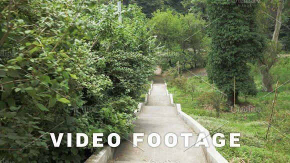 Stairs in one of the biggest botanical park - Batumi, Georgia. Europe #stairs #rainforest