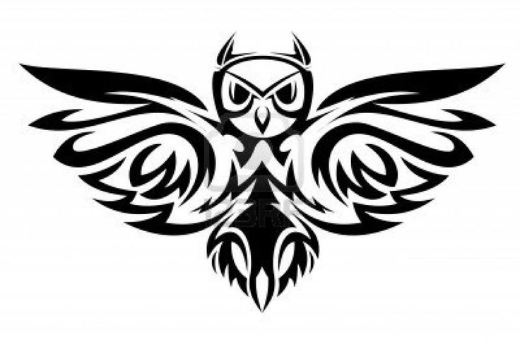 128 best images about tattoo on pinterest polynesian for Tribal owl tattoo