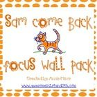 This freebie includes printables for your reading focus wall in  a 1st grade classroom that utilizes Reading Street.  This is the first story in Un...
