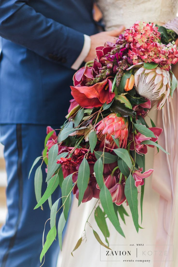 Burgundy Bouquet, protea, red, cascading, bride, tulips