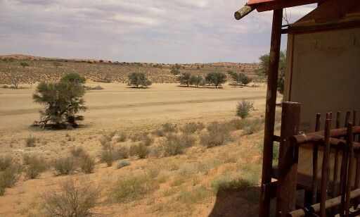 Kgalagadi view from chalet