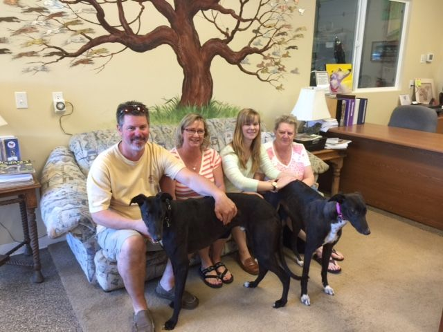 Taylor and Patch with their new family Michael, Glynis, Reese and Gramma.  Congratulations to this new #fureverfamily! #adoptaretiredracer #gpi #greyhound #greyhoundpetsinc #greyhoundsmakegreatpets