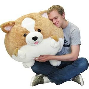 It S Here The Massive Corgi Who Doesn T Need A Giant