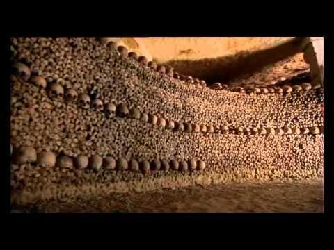 Neuvěřitelné lidské tělo CZ dabing Dokumentární, USA, 2007 nejlepsi filmy mypage cz - YouTube