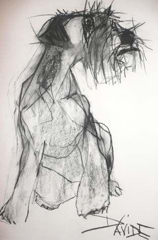 Valerie Davide                                                                                                                                                                                 More