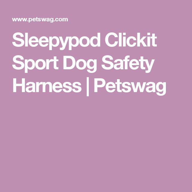 Sleepypod Clickit Sport Dog Safety Harness | Petswag