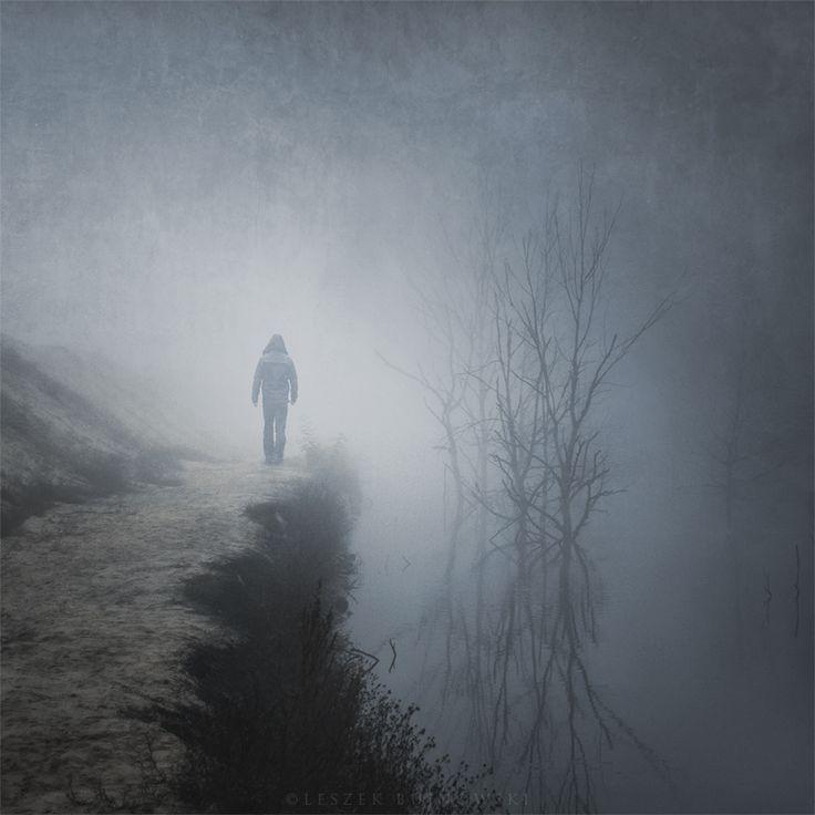 Misty marshPhotography Art History, Dark Foggy Mornings, Art Photography, Leszek Bujnowski, Based Photographers, Mornings Walks, Misty Mornings, Photographers Leszek, Come Back