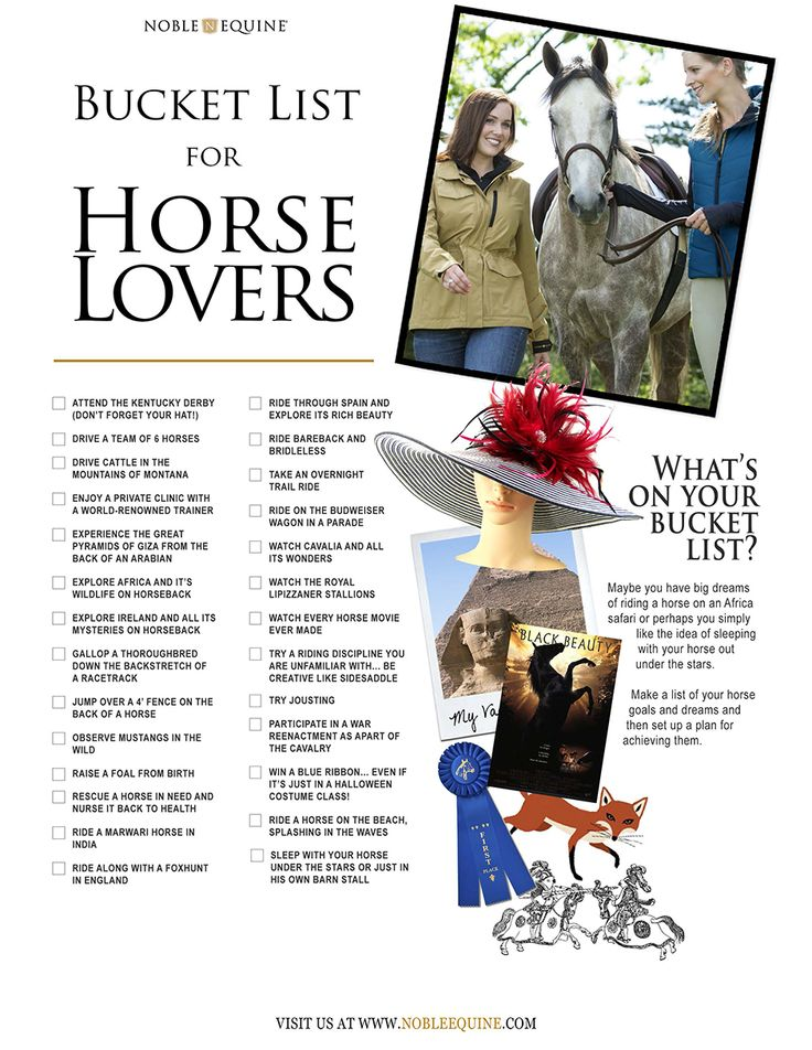 Noble Equine: From raising a foal from birth to horseback riding on the beach, everyone has a bucket list. Check out what Noble Life has pulled together for a Horse Lovers Bucket List.