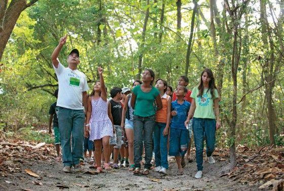 La figura del Educador Ambiental se caracteriza por ofrecer un enfoque multidisciplinar sobre los recursos y la problemática ambiental.