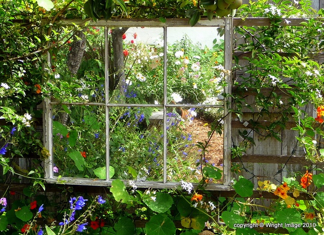 garden mirror. I hung one like this on our old tin shed.