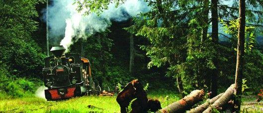 Mocanita de la Viseul de Sus  Cand spui Mocanita de la Viseul de Sus spui ultima cale ferata forestiera cu abur nu doar din Romania, ci la nivel mondial. In muntii Romaniei sade bine pitita una dintre cele mai mari avutii din punct de vedere cultural, dar mai ales din punct de vedere tehnic. Astazi, Valea Vaserului face parte din Parcul Natural Muntii Maramuresului si este sub protecţie europeană inca din anul 2007.