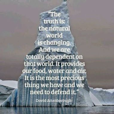Thoughts from David Attenborough