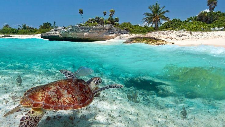 Entre las aguas cristalinas del Caribe y el legado maya