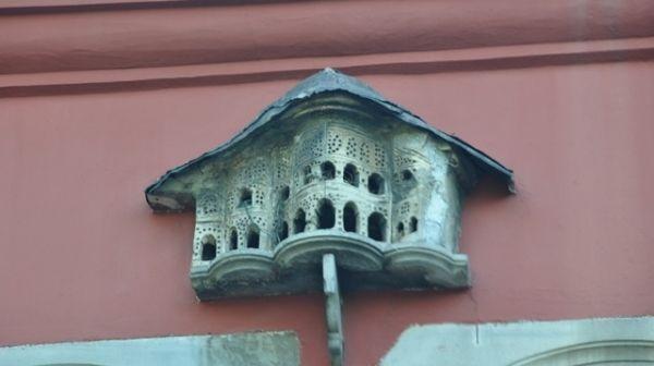 birds house, Türkiye
