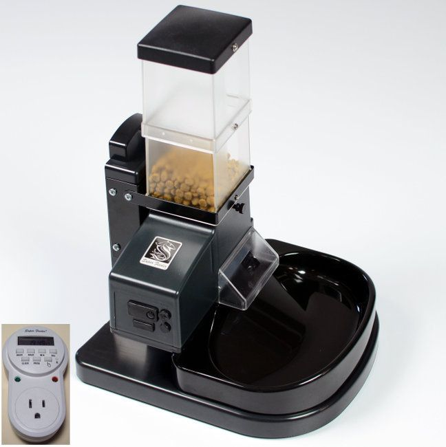 Automatic cat feeder with digital timer
