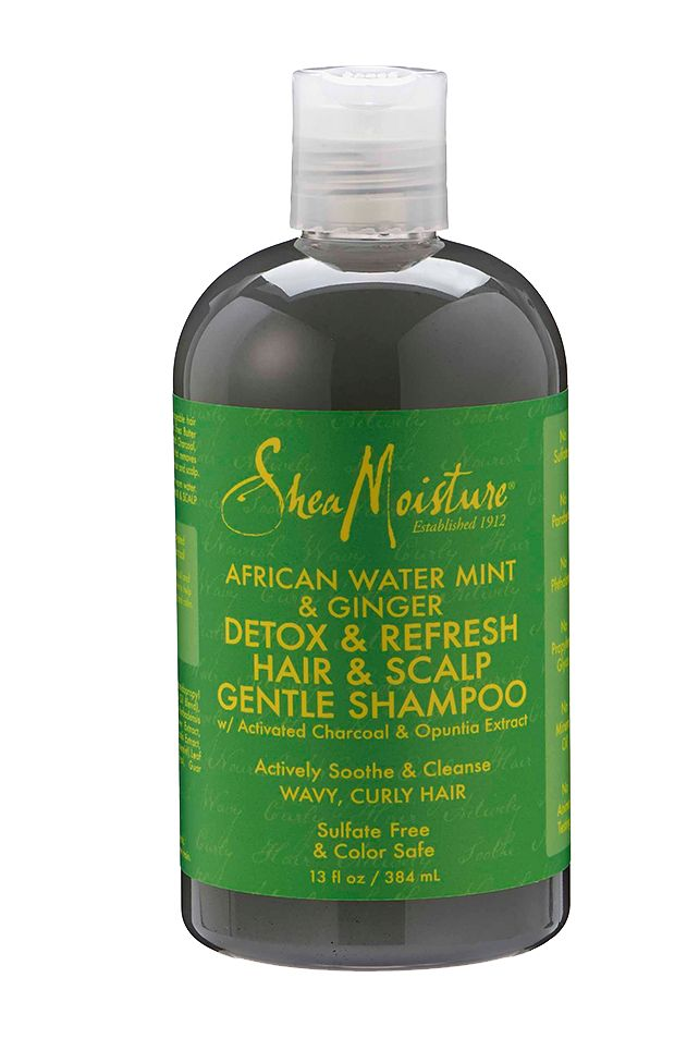 completely natural shampoo