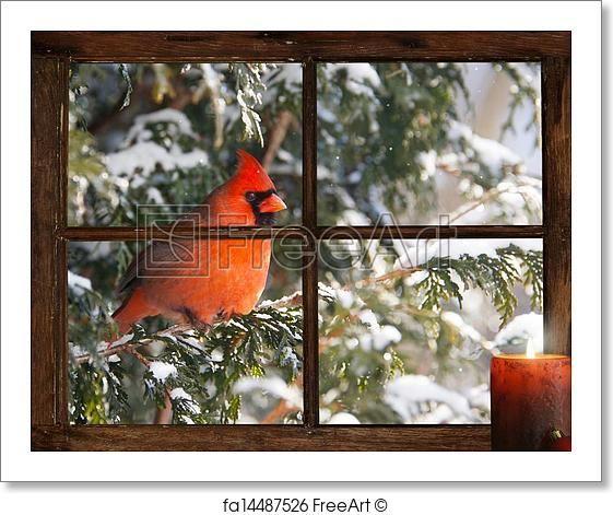 Christmas bird. - Artwork  - Art Print from FreeArt.com