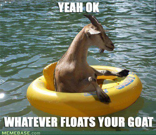 Goat humor hehe