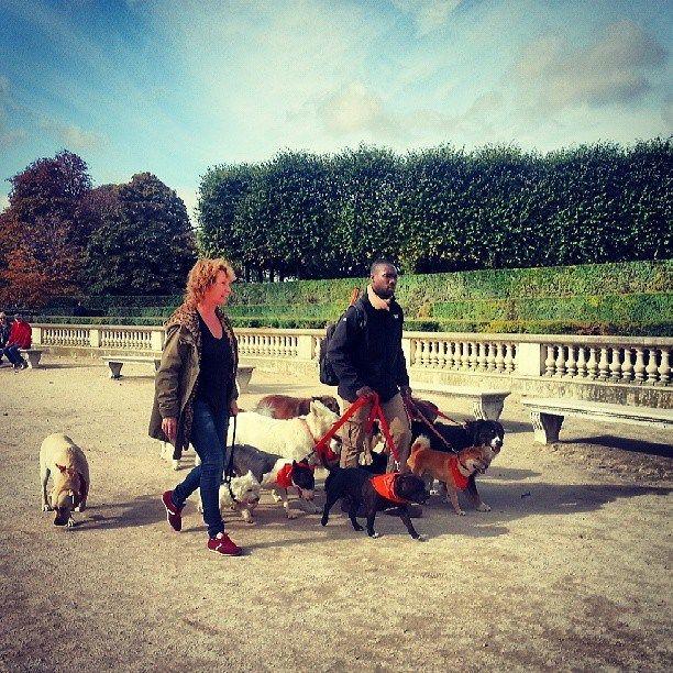 Dog-friendly city, Paris is!