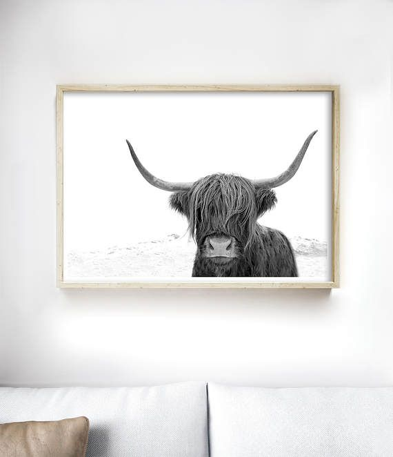 Highland Cow Art Print | Black and White Prints by Little Ink Empire on Etsy
