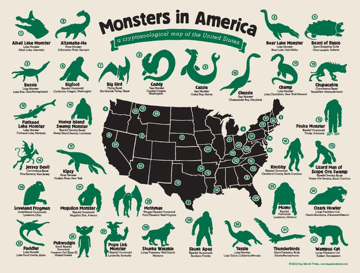 01/25/2015 - United Monsters Of America: Infographic Reveals The Strange Beasts That Have Captured The Nation's Imagination. From the Jersey Devil to the Mothman, the US is filled with fictional creatures that have come to life in the nation 's imagination. Now one artist has ruled to draw these cryptids by hand, revealing the beasts that are feared the most in each state.Source: The Daily Mail