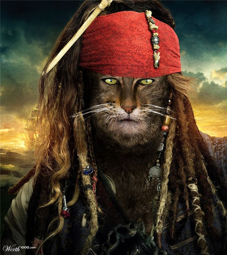 Anthropomorphic captain Cat Sparrow by memarCH 3rd place entry in Critter Pirates 4