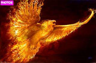 rising-phoenix-tattoo-24