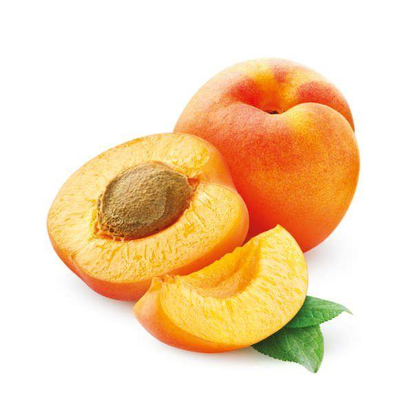 Morela - Prunus armenaca 'Harcot'