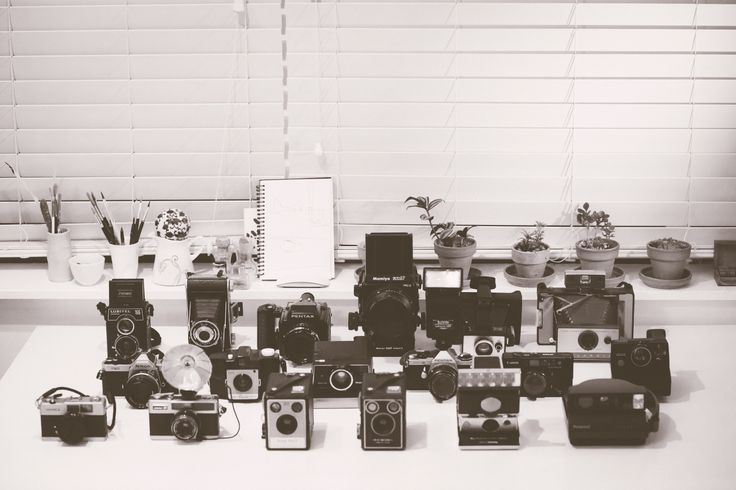 My growing camera collection
