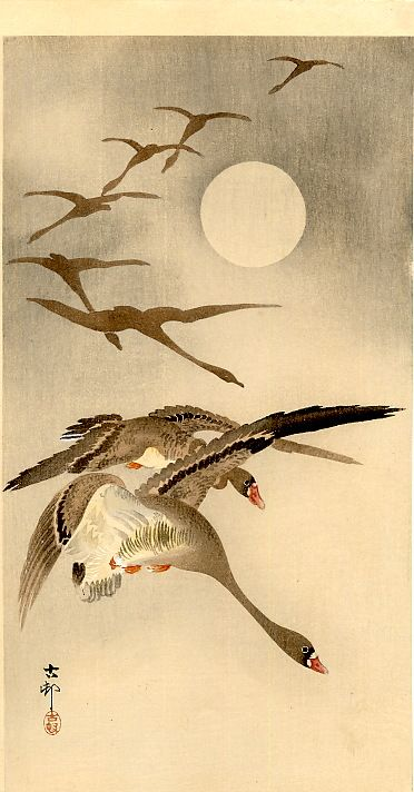 Eight White-fronted Geese in Flight; full Moon behind  Artist: Ohara Koson
