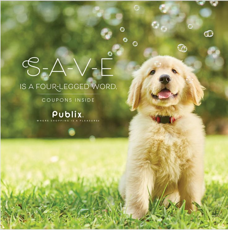 Publix Pet Sale Ad April 26 - May 9, 2017 - http://www.olcatalog.com/grocery/publix-sale.html
