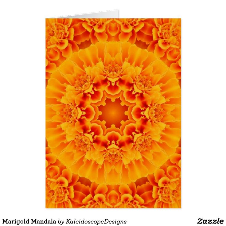 Marigold Mandala Card (sold - Colorado) Thank you!