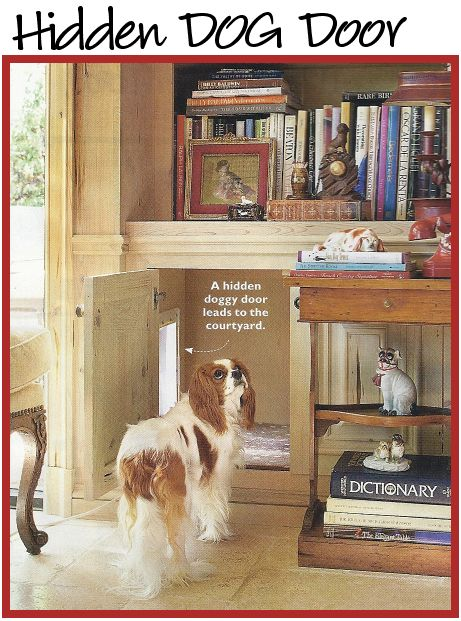 A great idea for a doggie door.  A built-in bookshelf with an opening leading to the outside.  Have doors on the bottom of the built-in so you can control when the dog can go in and out (bad weather, mowing the lawn, etc.).