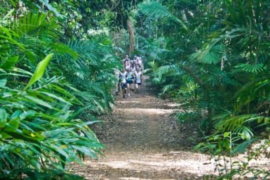 Whitsunday Great Walk Reviews - Airlie Beach, Queensland Attractions - TripAdvisor