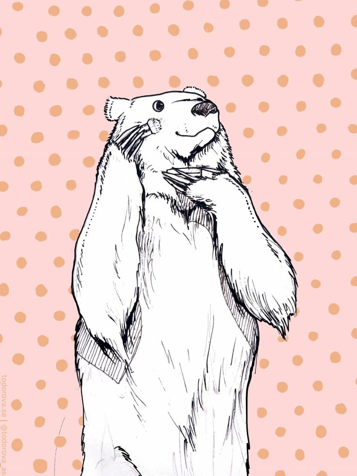 A print for sale. Bear/ bare minerals