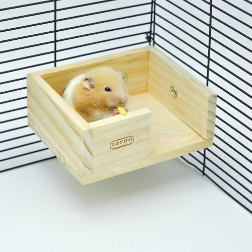Hamster can not do without a cage full of accessories, they hate boring lives where is nothing to do. Check the coolest hamster accessories on the market.