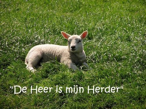 De heer is mijn herder www.relicards.nl