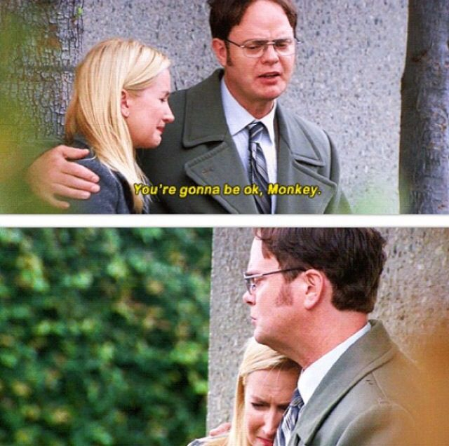 145 Best The Office Images On Pinterest Memes Dunder Mifflin And