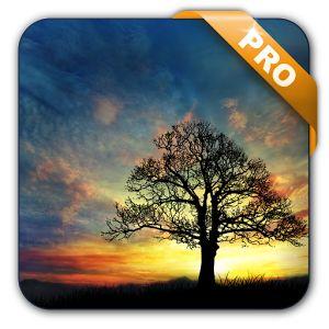 Download Sunset Hill Pro Live Wallpaper v1.3.7 Full Apk  Baca Selengkapnya Di : http://www.aplikasi-apk.com/2016/04/download-sunset-hill-pro-live-wallpaper-v137.html#ixzz46OcREcsO