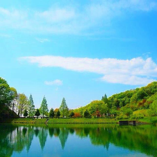 【n_o_n_t_a_n_4510】さんのInstagramをピンしています。 《いつかの #岐阜#花フェスタ記念公園#池 #写真好きな人と繋がりたい #写真部#カメラ部#青空#空#緑#森#公園#OLYMPUS#OLYMPUSPEN#OLYMPUSPENEP3#japan#🇯🇵#japan_photo#wp_japan#wu_japan#love_nippon #love_japan》